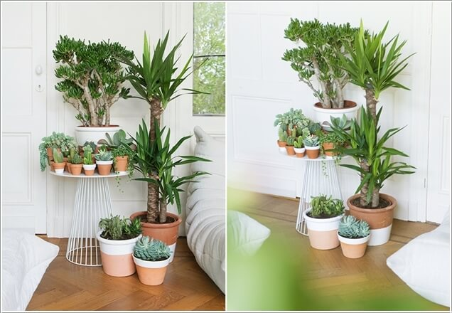 15 Amazing Ideas To Display Your Indoor Plants Architecture & Design