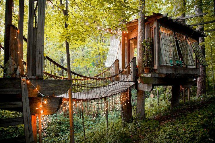 15 Must See Homes That Are Completely Enveloped By Nature