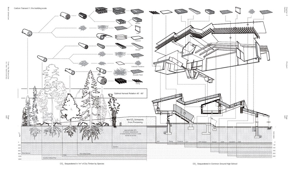 medium resolution of an image from the forthcoming book wood urbanism from the molecular to the territorial actar 2018 a diagram explaining the systems and processes