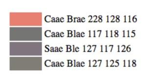 Shane note que, d'abord, l'algorithme semblait former des mots qui combinent le brun, le bleu et le gris.