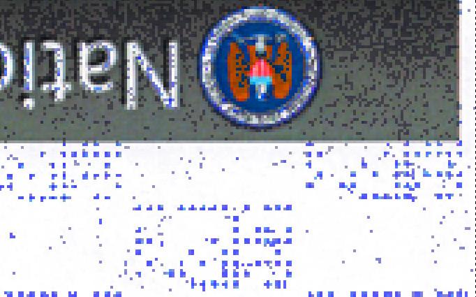 nsa-stego