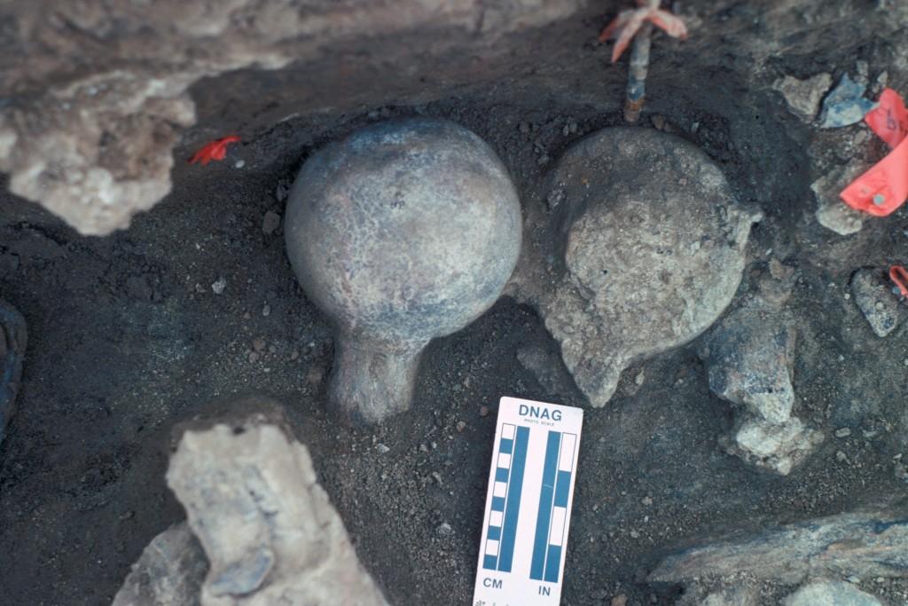 2 mastodon femoral heads