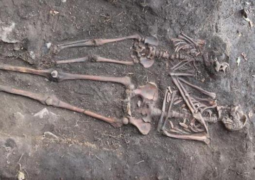 Image of two skeletons.