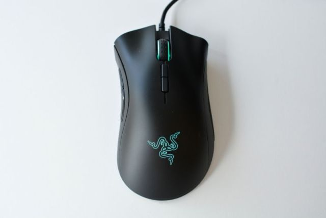 A computer mouse.