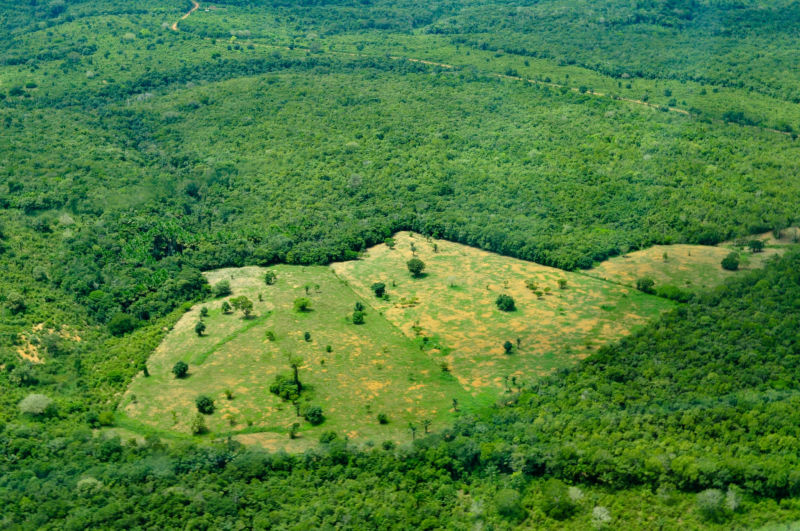 Aerial view of the Amazon rainforest, near Manaus the capital of the Brazilian state of Amazonas, Brazil.