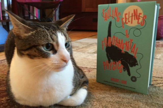 Cats are cautiously fond of physics, as Ariel can attest.