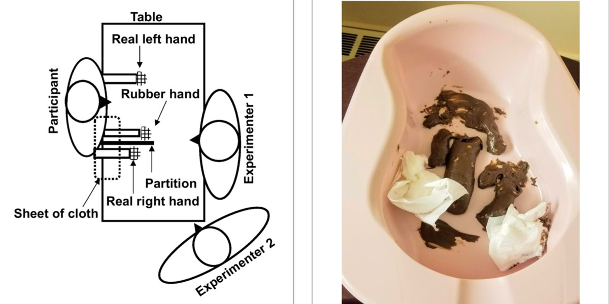 (left) Schematic of rubber hand experimental setup. (right) The