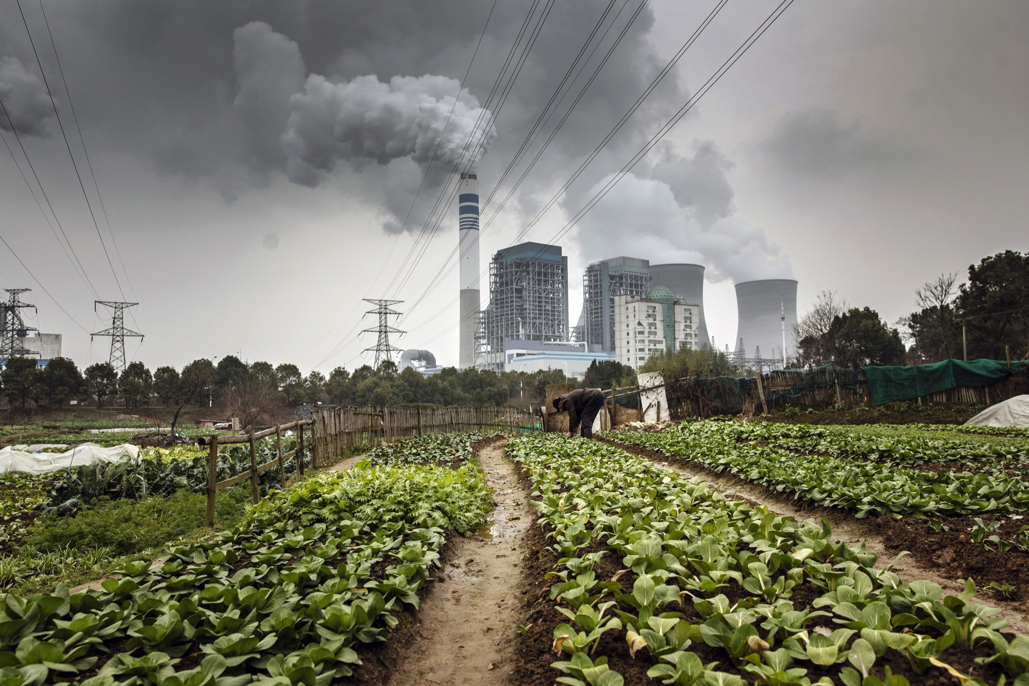 Coronavirus cuts Chinese carbon emissions by up to 25 percent ...