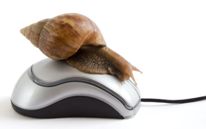 A snail resting on a computer mouse, to illustrate slow Internet service.