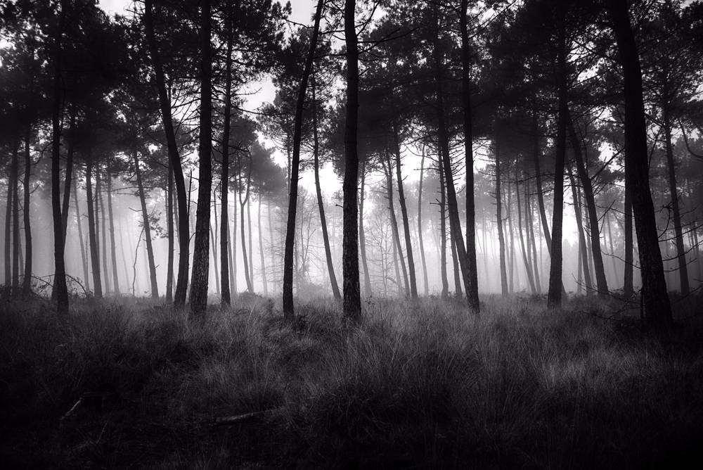 Photo noir et blanc Bretagne  Achat  Vente photos dart noir et blanc  ArtPhotoLimited