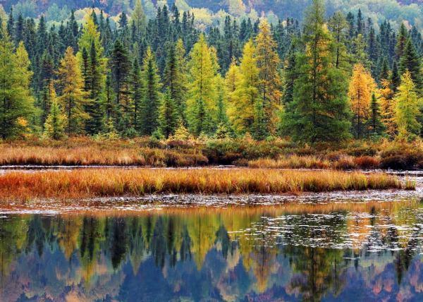 Visit Algonquin Provincial Park Canada Audley Travel