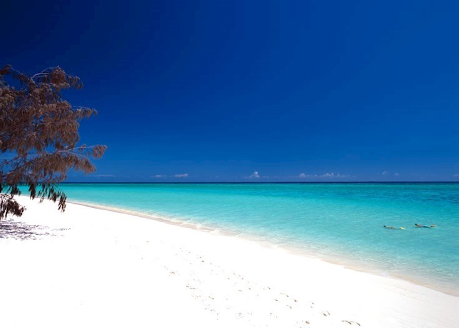 Visit Heron Island On A Trip To Australia Audley Travel