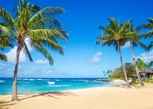 Hawaii Holidays 2019 & 2020 Tailor- Tours Audley Travel
