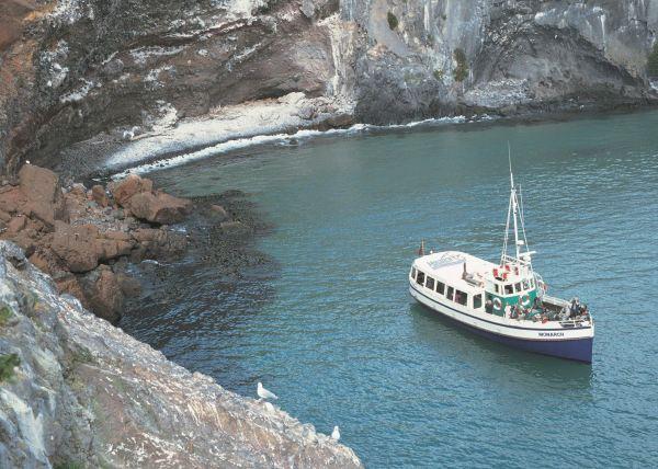 Otago Peninsula Cruise Zealand Audley Travel