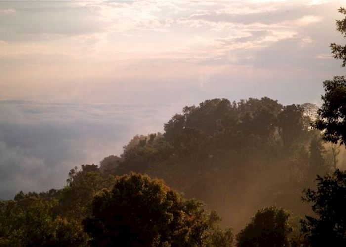 Clouds Mountain Gorilla Lodge Audley Travel