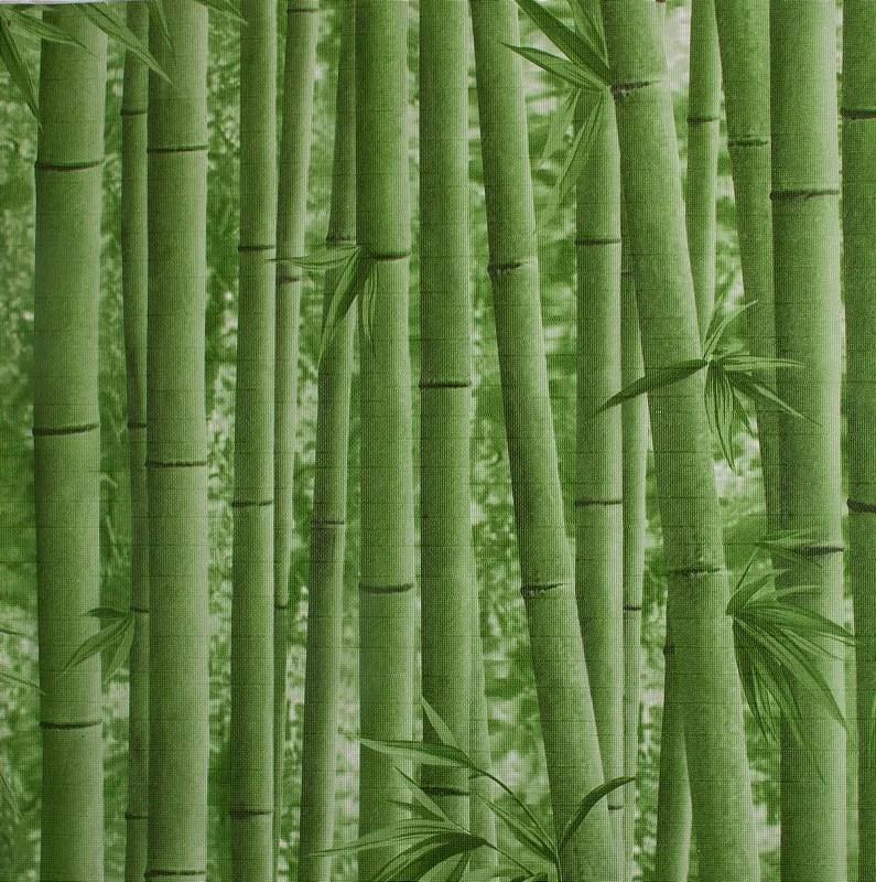 Papel de parede Neonature Estilo Bambuzal Verde PR0202  Site de tecidos para sof cortinas papel de parede e mveis