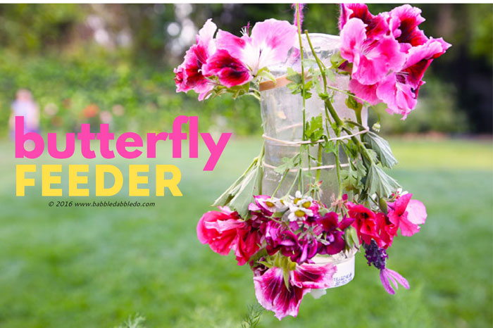 Nature Craft For Kids Make A Butterfly Feeder Babble Dabble Do