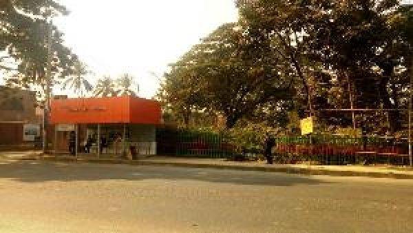 নির্জন এই শেরে বাংলানগরের সেকেন্ড গেটের পাশের নার্সারিগুলো ছিনতাইকারীদের ঢাল হিসেবে কাজ করে