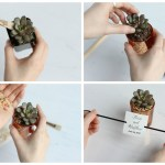 Creative Crafting The Prettiest Diy Succulent Wedding Favors Beau Coup Blog
