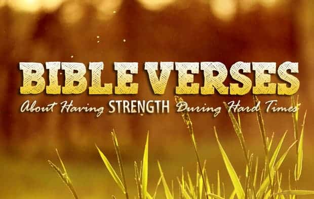 bible verses about having