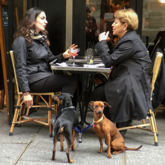 Dogs and their guardians at a cafe in Paris, France.