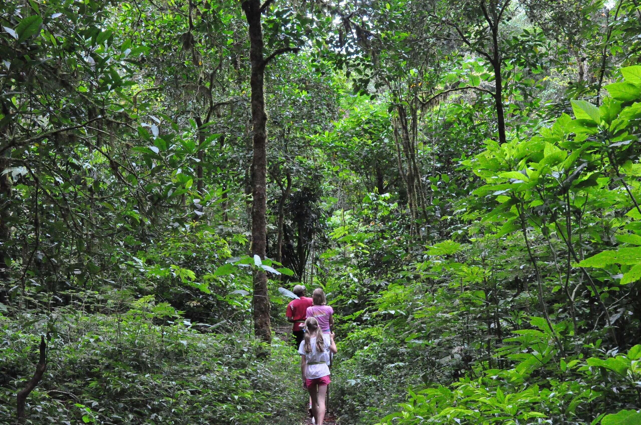 Kết quả hình ảnh cho trekking bidoup núi bà