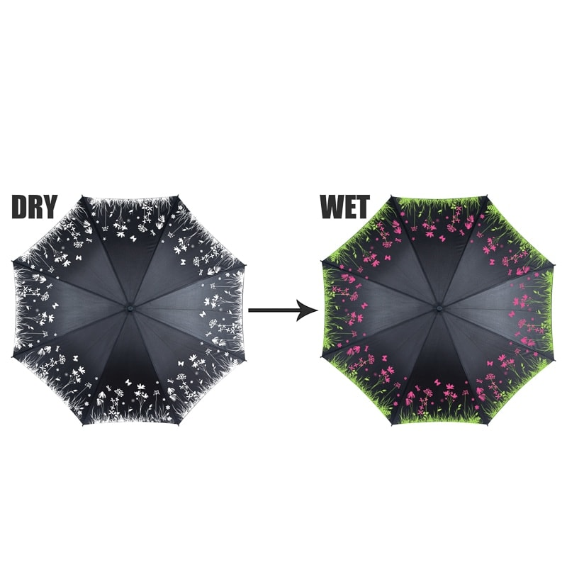 Colour Changing Umbrella  Floral  Umbrellas  BM