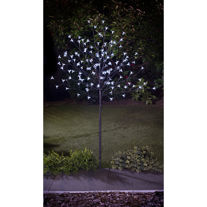 Best Led Lights Outdoor Trees