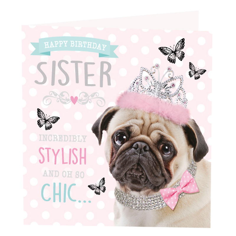 2 Year Old Little Girls Happy Birthday Wallpaper Sister Pug Birthday Card Greeting Cards