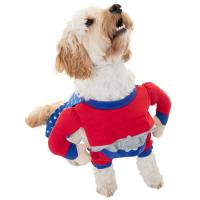 Dogs Superhero Costume