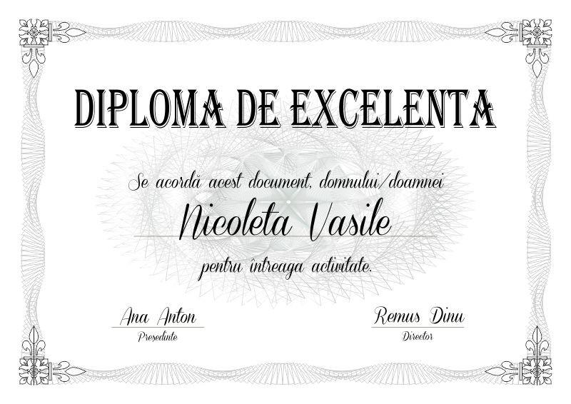 IVP Trofee Diploma de excelenta E001 Magazin Online