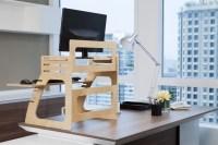 Adjustable Plywood Standing Desk For Home Office