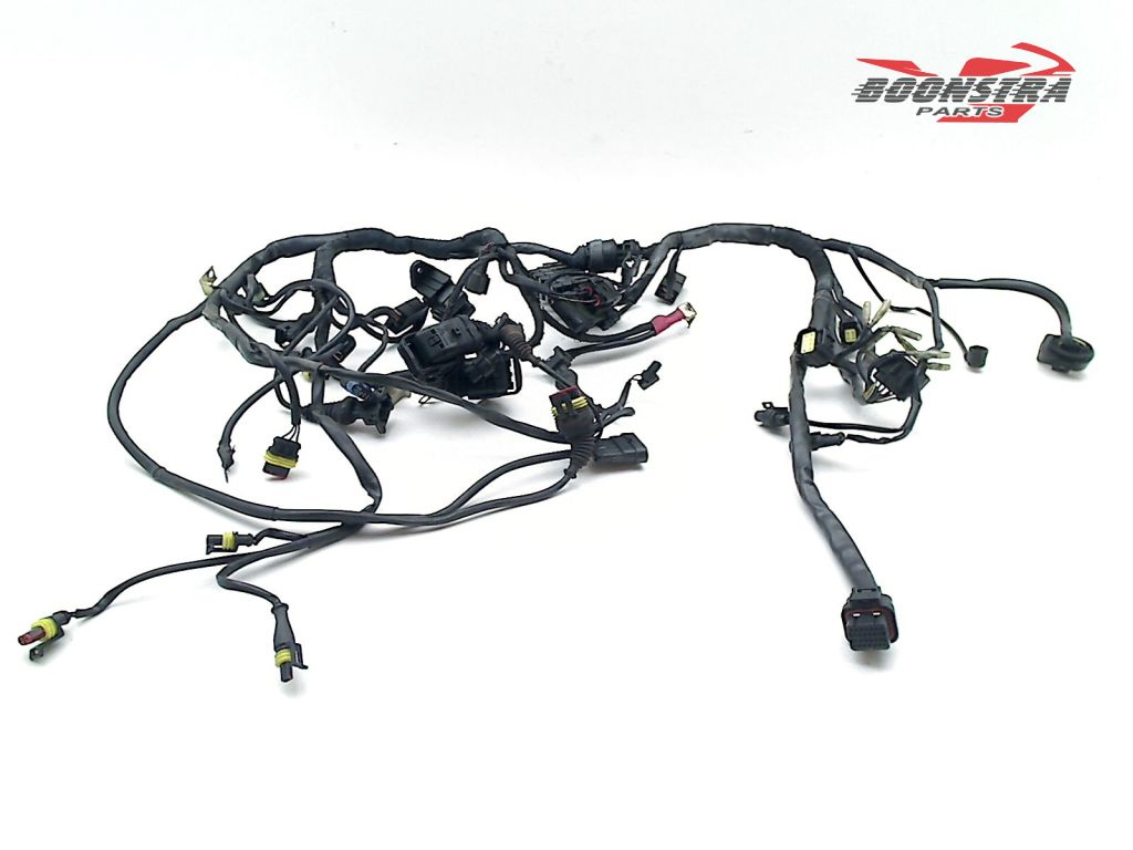 Ducati Multistrada 1000 DS 2003-2004 Wiring Harness (Main