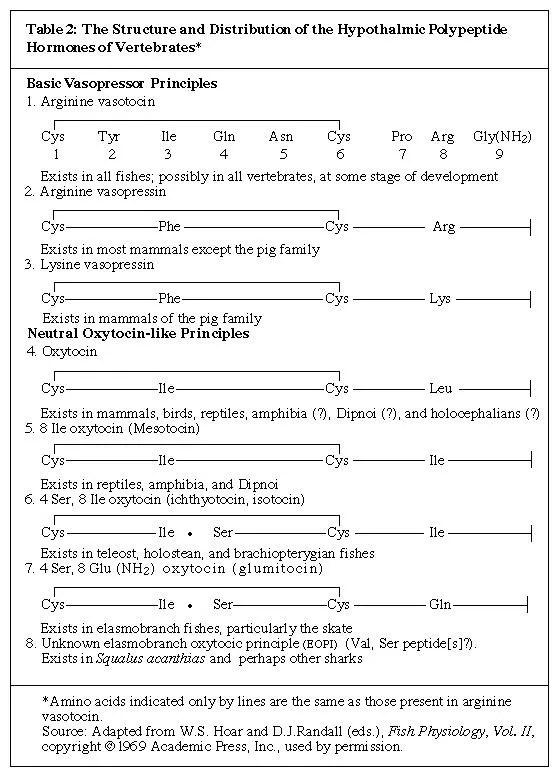 Hypothalamic Polypeptide Hormone