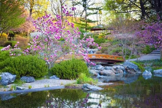 japanese garden elements types