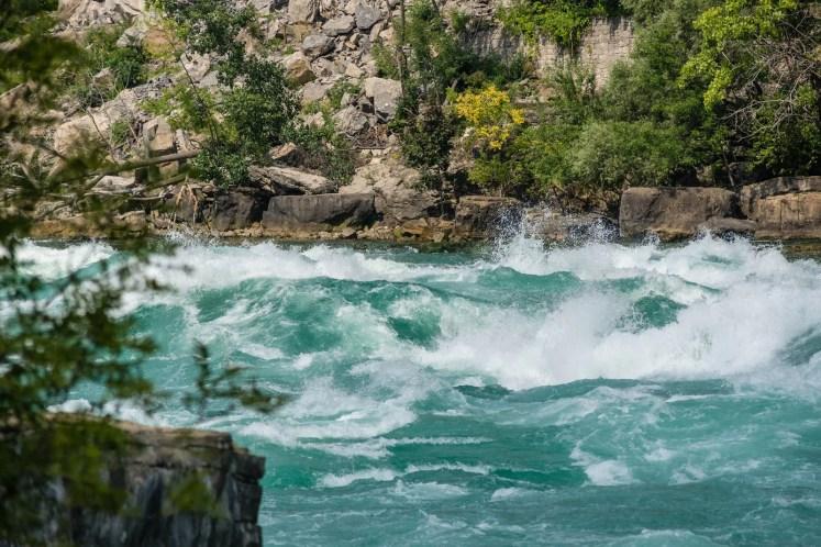 اهمية الماء للجهاز الدورى للانسان
