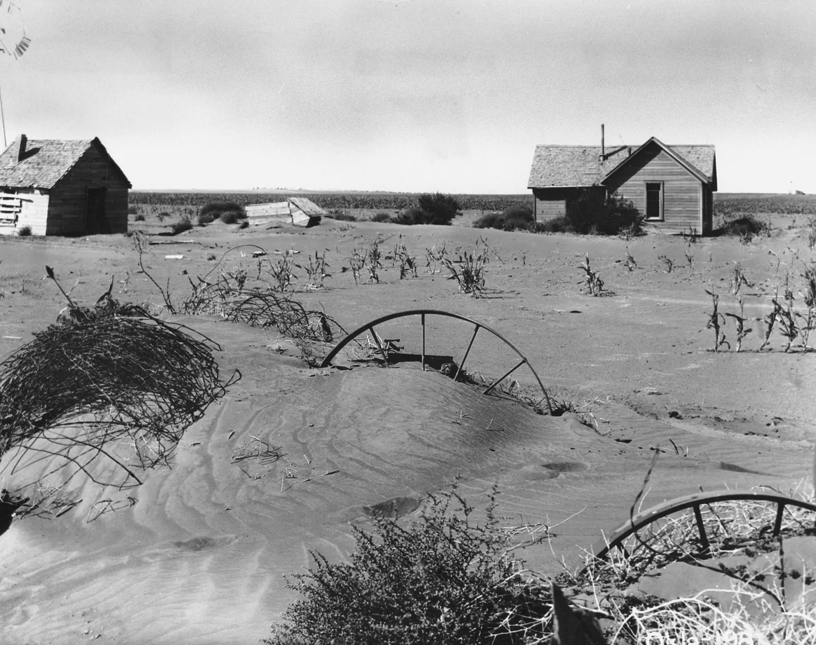 dust bowl facts definition