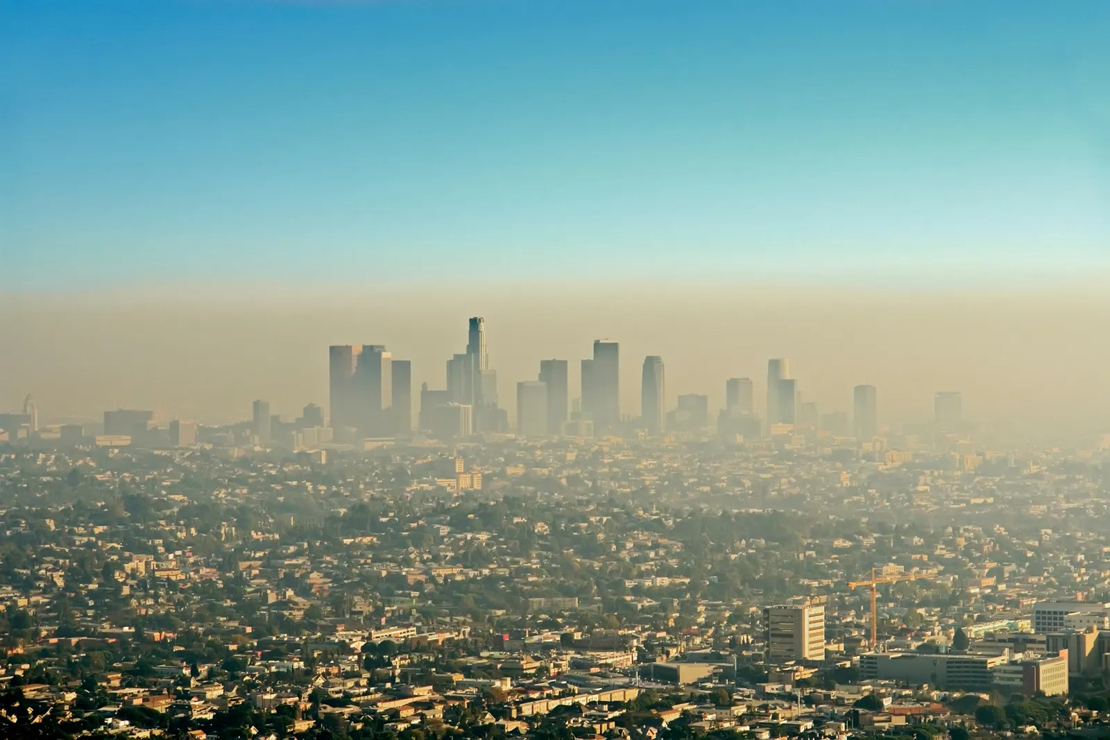 Smog City Worksheet Answers