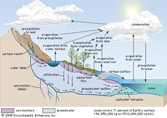 energy level diagram for nitrogen wiring contactor water cycle | definition, steps, diagram, & facts britannica.com