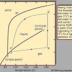 Simple Phase Change Diagram Turtle Shell Anatomy Liquid Chemistry Properties Facts Britannica Com