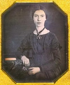 Image result for emily dickinson