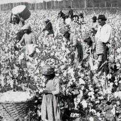 Indentured labour Britannica
