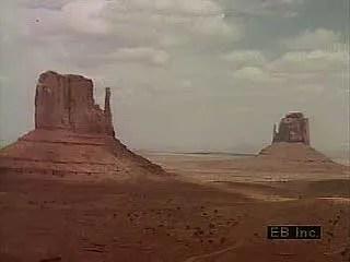 desert definition climate animals