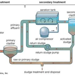 Wastewater Treatment Plant Flow Diagram Nba Basketball Court Primary Britannica Com And Secondary Of Sewage Using The Activated Sludge Process