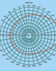 Figure perimeter chart showing normal visual field figures on the indicate degrees also eye testing britannica rh