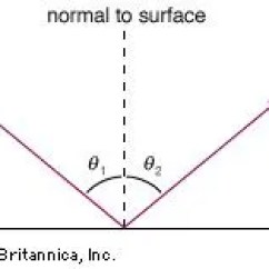 Reflection Ray Diagram Ks3 2001 Chevrolet Cavalier Stereo Wiring Light And Refraction Britannica Com For A Smooth Surface The Angle Of Incidence 81 Equals