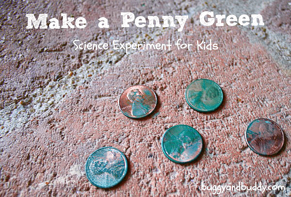 Chemical Reactions: Make a Penny Turn Green (with free ...