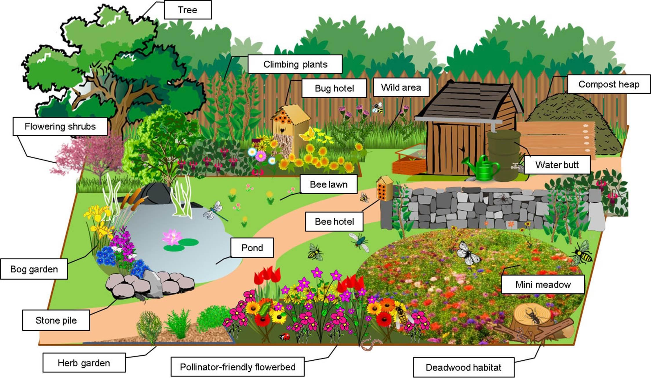 Gardening For Bugs