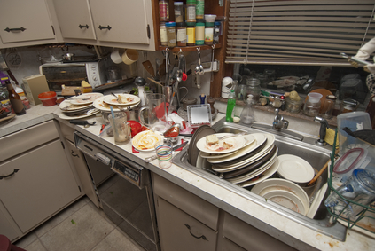why everything but the kitchen sink