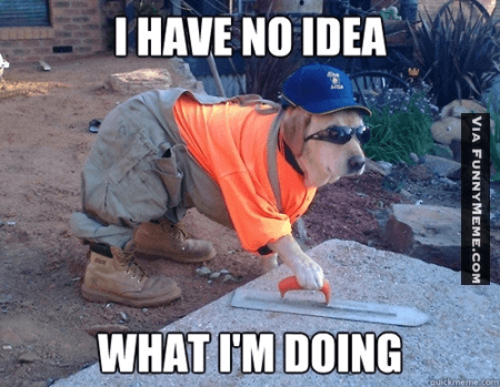 I Have no Idea What I